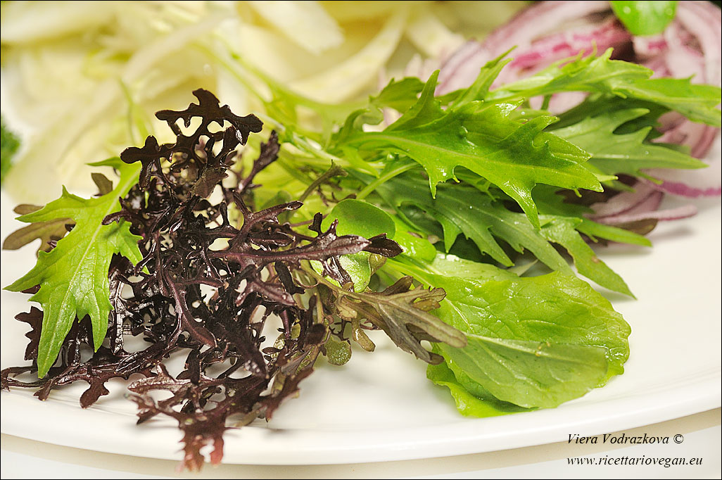 Spiedini di tofu e insalata quasi orientale Ricettario Vegan